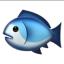 penguin-party-fish