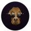 snoop-doge